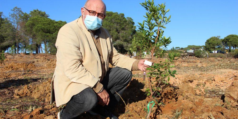 Terras de Verdelago enterprise invests in the afforestation of native species.