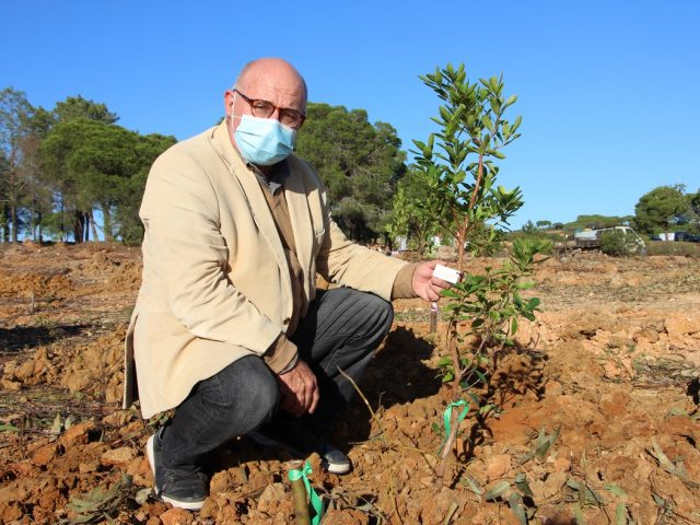 Terras de Verdelago enterprise invests in the afforestation of native species.